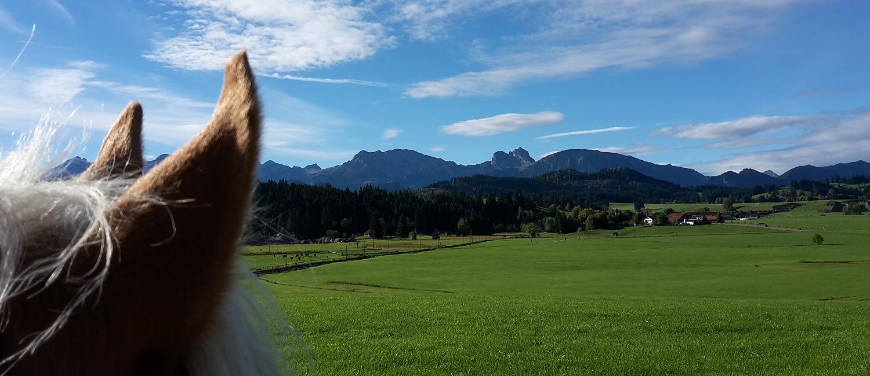 Aussicht von unserem Ferienhof