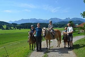 Unsere Pferde Rocky, Usira und Lucky